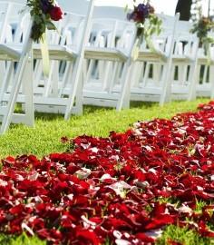 Lori-Michael-Wedding-07-14-9769_ret-236x300